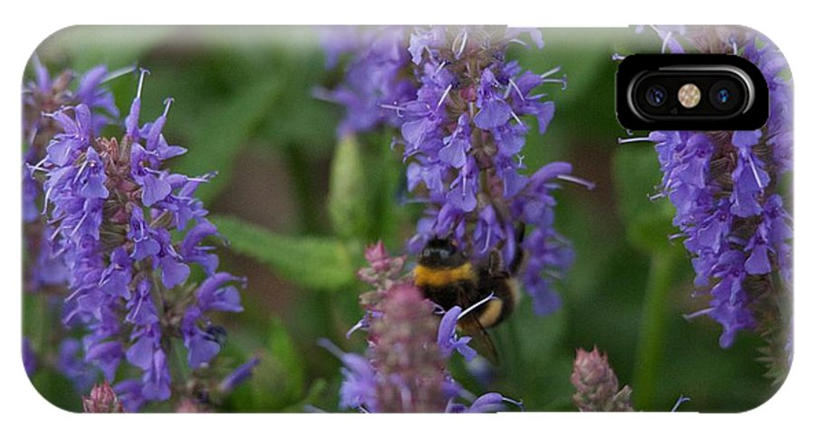 Beth Chatto IPhone X Case featuring the photograph Beth Chatto Gardens by Sean Foreman