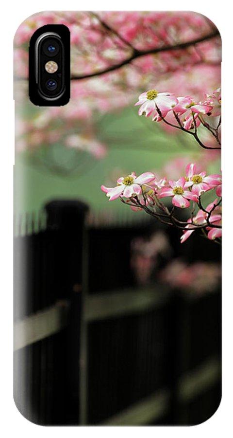 Abundance IPhone X Case featuring the photograph Dogwood Tree In Full Bloom, Audubon 4 by Adam Jones