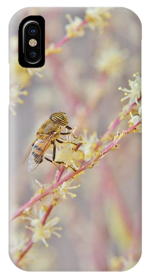 Macro; Image; Hoverfly; Flower; Flowerfly; Yellow; Syrphidfly; Nectar; Pollen; Drone Fly; Nature; Garden; Background; Decorative; Detail; Insect; IPhone X Case featuring the photograph Drone Fly by Werner Lehmann