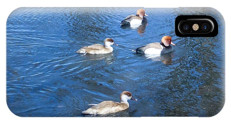 Ducks IPhone X Case featuring the photograph 4 Duck Pond by Mechala Matthews