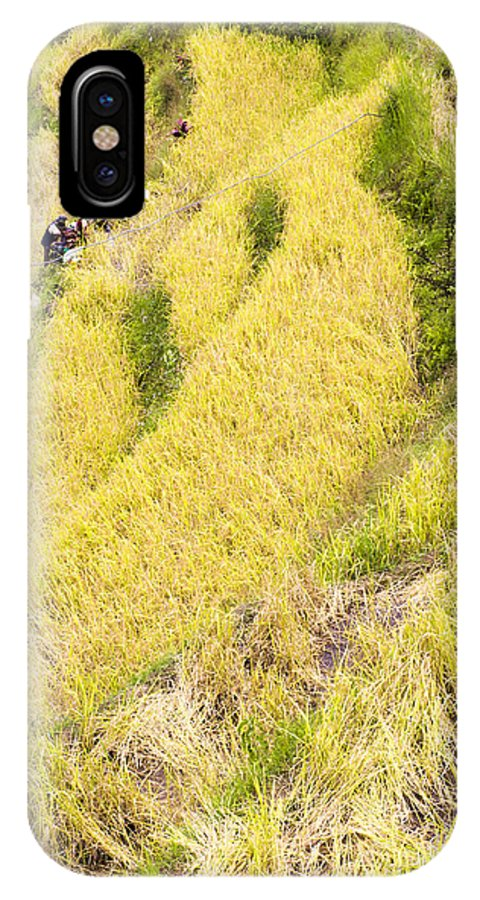 Rice IPhone X Case featuring the photograph Farmers At Rice Field by Tuimages