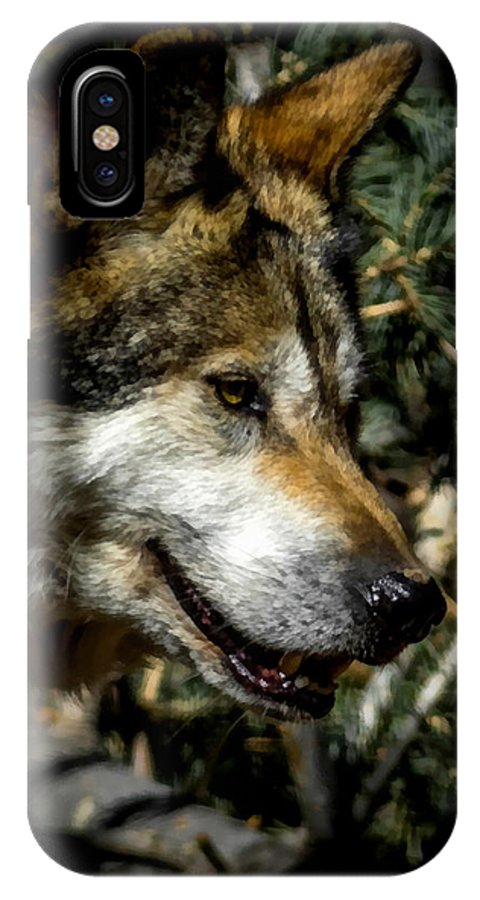 Wolf IPhone X Case featuring the digital art Mexican Grey Wolf by Ernie Echols