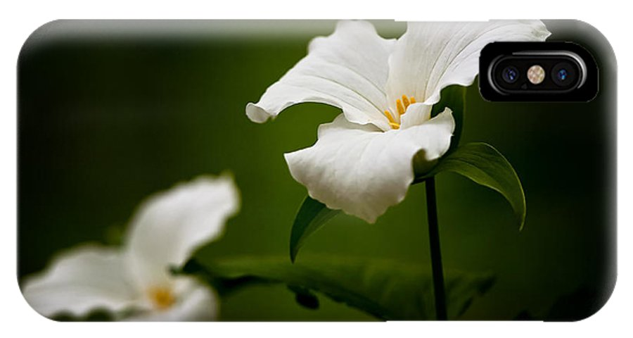Michael Cummings IPhone X Case featuring the photograph White Trillium - Trillium Grandiflorum by Michael Cummings