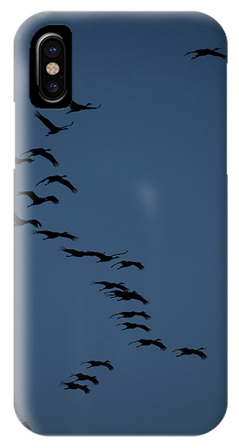 Sky IPhone X Case featuring the photograph Sandhill Migration by Jeffrey Phelps