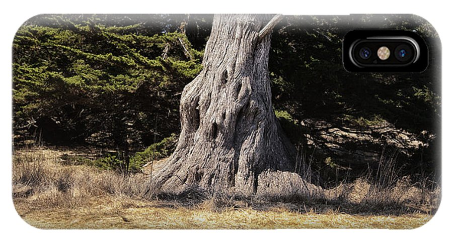 Print IPhone X Case featuring the photograph 668 Det The Old Tree by Chris Berry
