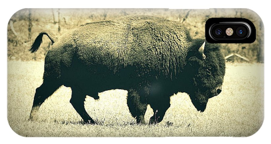 Landscape IPhone X Case featuring the photograph Buffalo by Mickey Harkins
