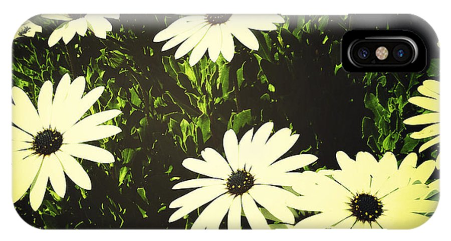 Bloom IPhone X Case featuring the photograph Daisies by Les Cunliffe