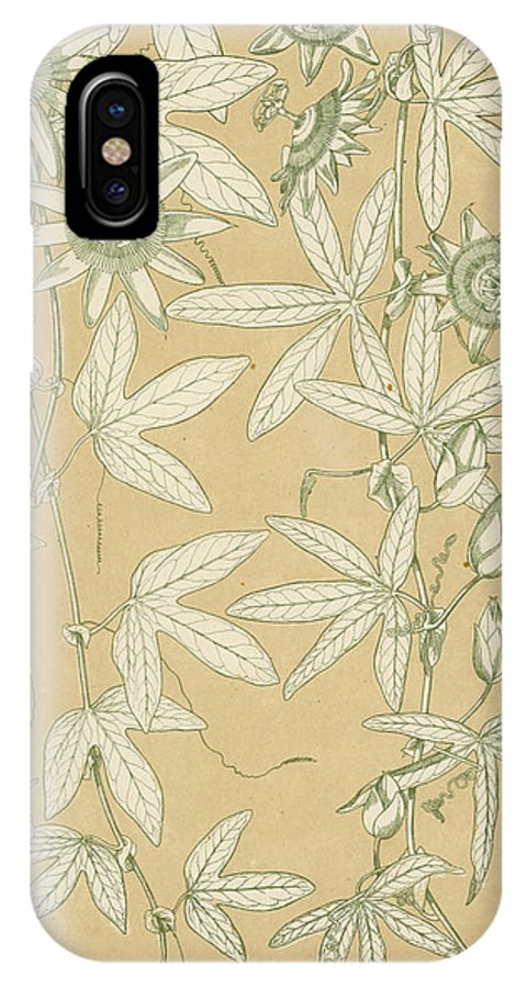 Ornament; Ornamentation; Design; Pattern; Historical; Plates; Leaves; Nature; Botany; Botanical; Leaf; Natural IPhone X Case featuring the painting Leaves From Nature by English School