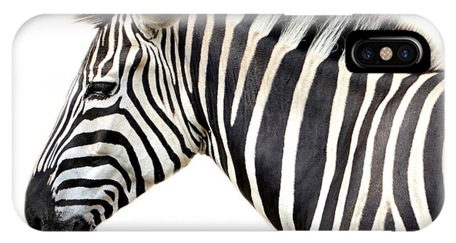 Zebra IPhone X Case featuring the photograph Zebra by Heike Hultsch
