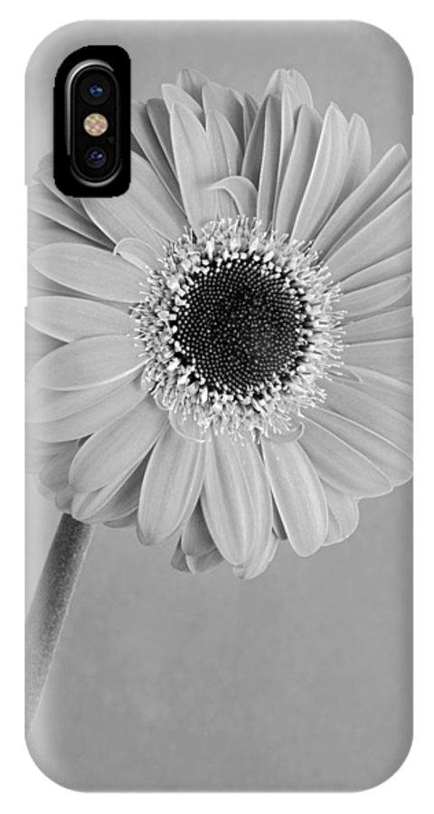Flower; Flowers; Plant; Gerbera; Daisy; Daisies; Gerberas; Spring; Springtime; Season; Nature; Natural; Flora; Bloom; Blooming; Blossom; Blossoming; Macro; Close-up; Detail; Details; Greece; Hellas; Greek; Hellenic; Attica; Attika; Attiki; Europe; European; Mediterranean; Aesthetic; Aesthetics; Esthetic; Esthetics; Artistic; Beautiful; Beauty; Still Life IPhone X / XS Case featuring the photograph Black And White Beauty by George Atsametakis