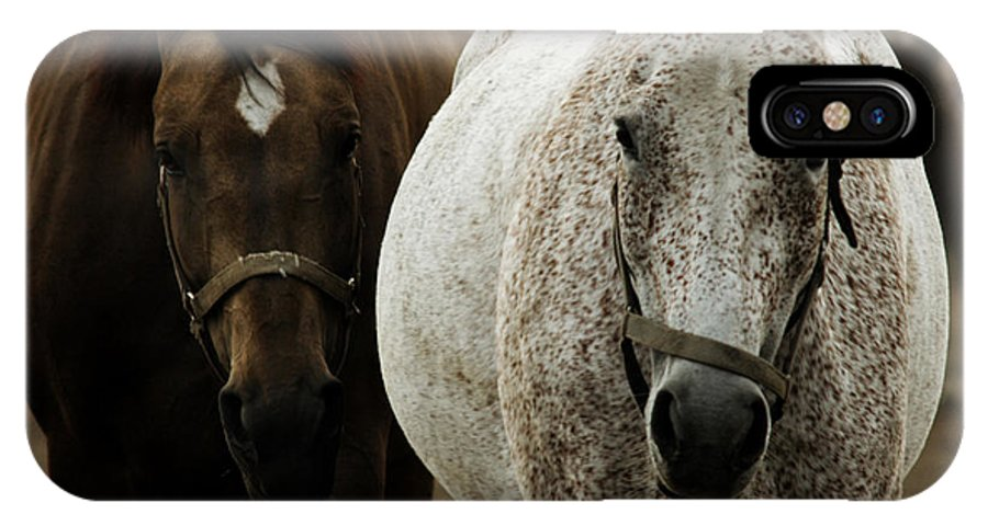 Horse IPhone X Case featuring the photograph Horses by Angel Ciesniarska