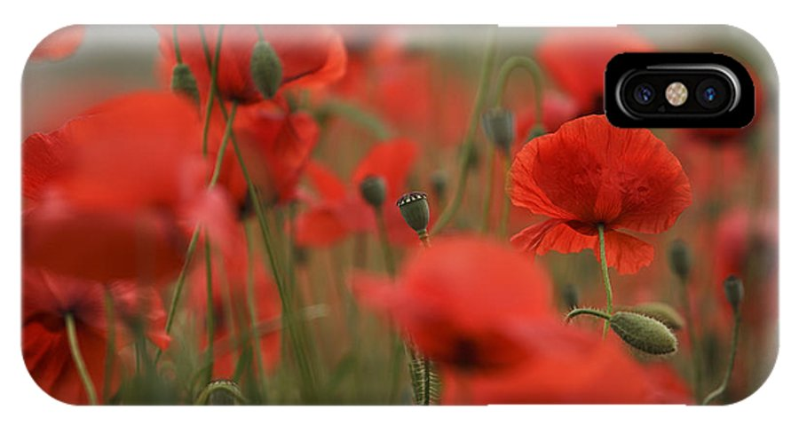Poppy IPhone X Case featuring the photograph Red by Nailia Schwarz