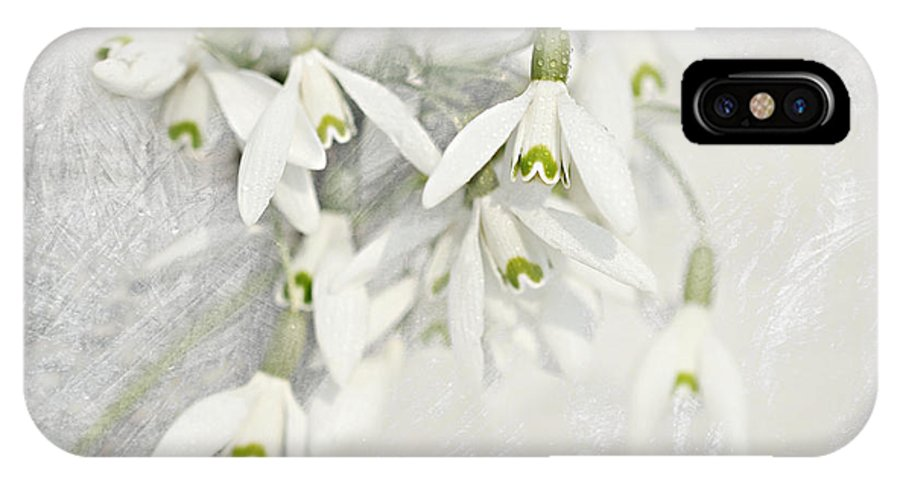 Decoration IPhone X Case featuring the mixed media Snowdrops by Heike Hultsch