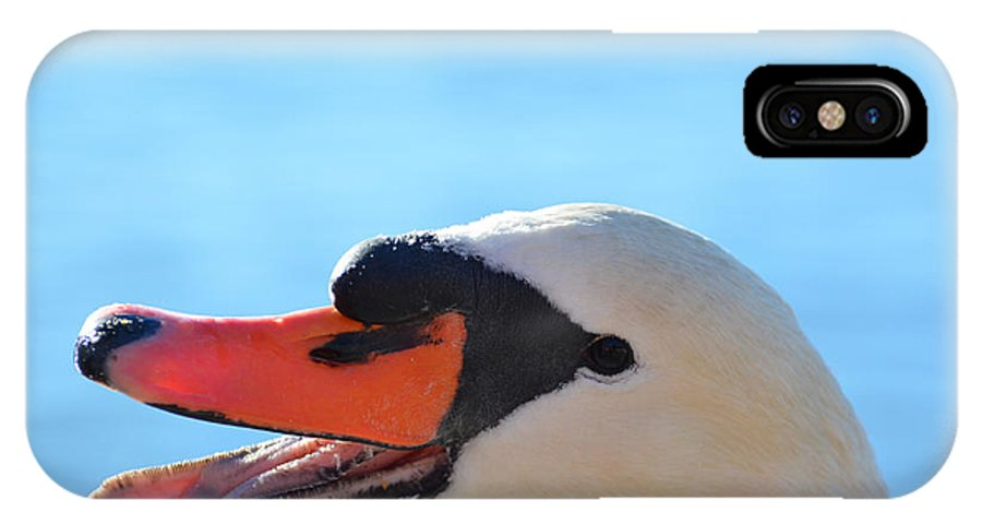 Swan IPhone X Case featuring the photograph Swan by Mats Silvan