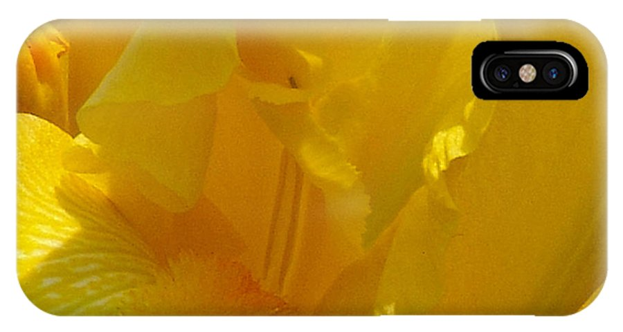 Iris IPhone X Case featuring the photograph Yellow Iris 2 by David Hohmann