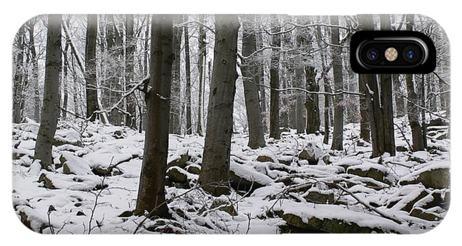 Winter IPhone X Case featuring the photograph Forest In Winter by Pavel Jankasek