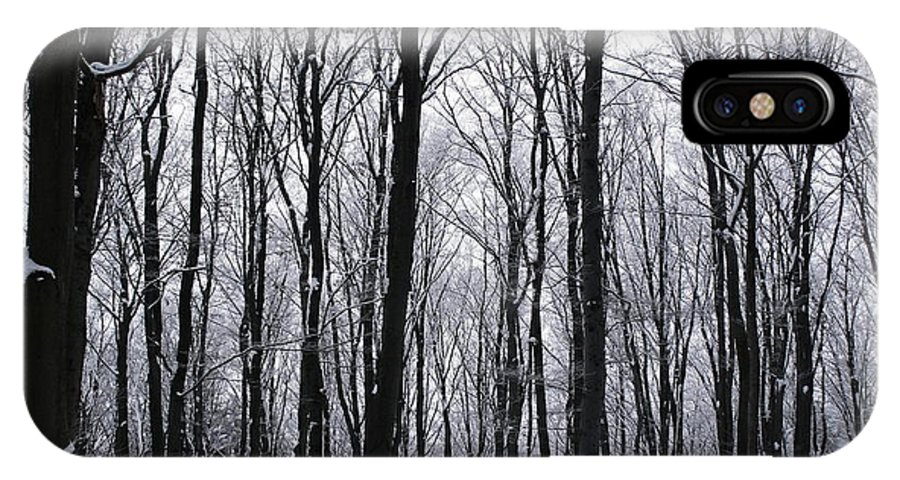 Trees IPhone X Case featuring the photograph Trees In Winter by Pavel Jankasek