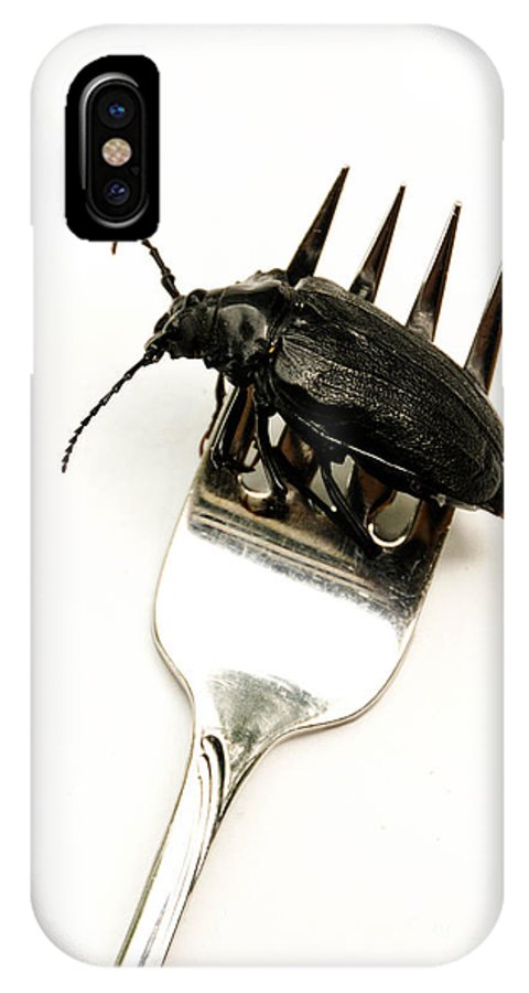 Absurd IPhone X Case featuring the photograph A Bite Of Water Bug by Amy Cicconi