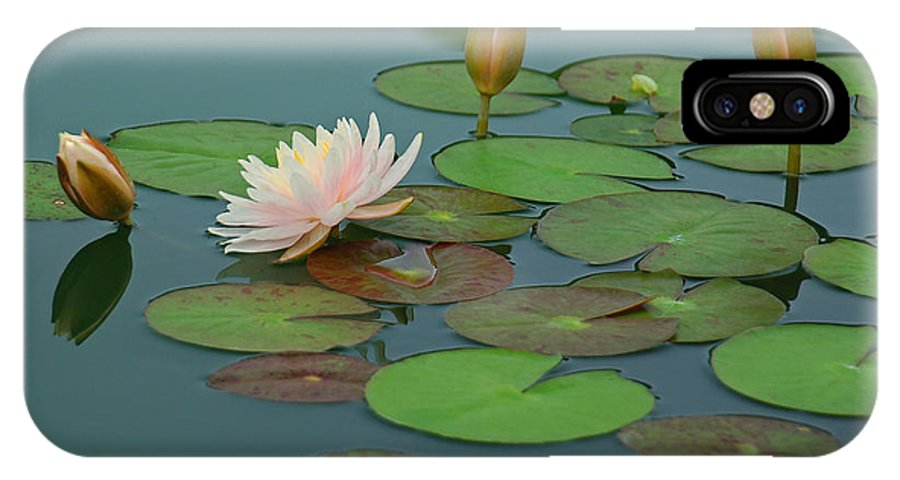Water Lily IPhone X Case featuring the photograph A Day at the Lily Pond by Suzanne Gaff