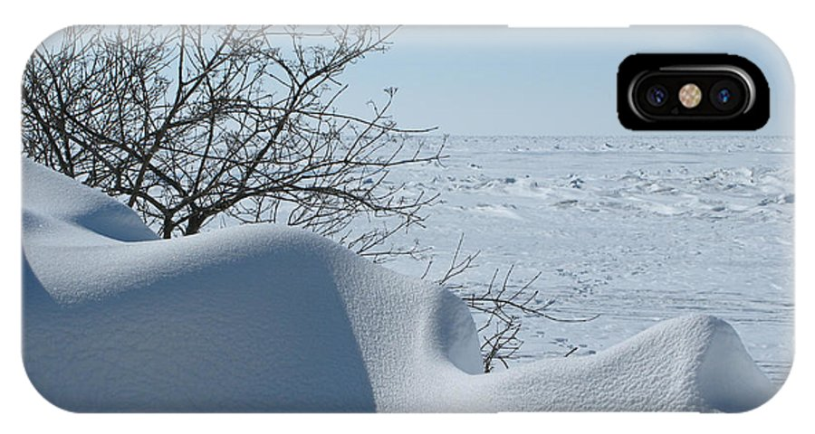 Winter IPhone X Case featuring the photograph A Gentle Beauty by Ann Horn