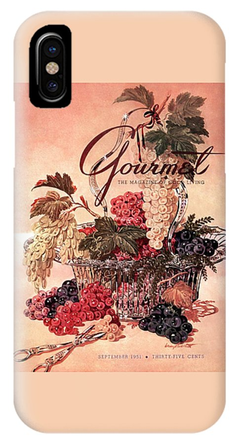 Illustration IPhone X Case featuring the photograph A Gourmet Cover Of Grapes by Henry Stahlhut