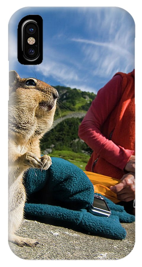 Animal Themes IPhone X Case featuring the photograph A Hiker Makes Friends With The Local by Cliff Leight
