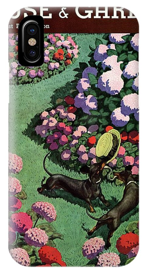 Illustration IPhone X Case featuring the photograph A House And Garden Cover Of Dachshunds With A Hat by Pierre Brissaud