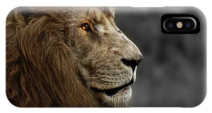 Animal IPhone X Case featuring the photograph A King's Look by Ben Yassa