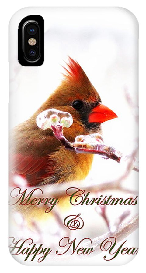 Christmas IPhone X Case featuring the photograph A Lady For Christmas - Cardinal Card by Travis Truelove