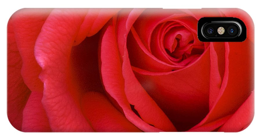 Rose IPhone X Case featuring the photograph A Lovely Red Rose by Fred Ziegler