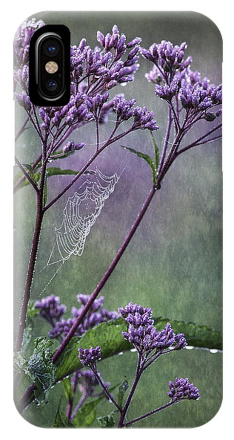 Joe Pye Weed IPhone X Case featuring the photograph A Morning Walk by Dale Kincaid