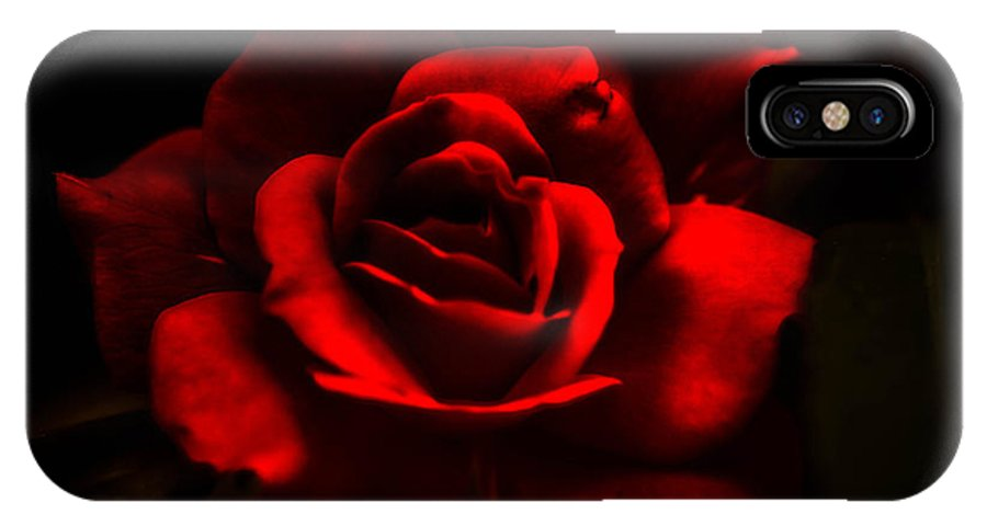 Beauty IPhone X Case featuring the photograph A Rose By Any Other Name by J Riley Johnson