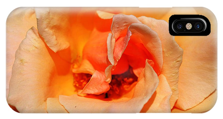 Landscape IPhone X Case featuring the photograph A Rose By Any Other Name... by Pam Romjue