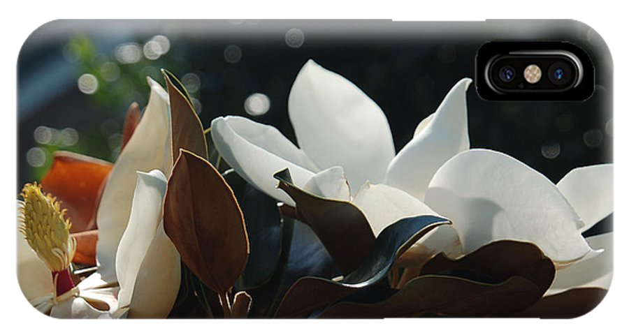 Magnolia IPhone X Case featuring the photograph A Sea Of Magnolias by Suzanne Gaff