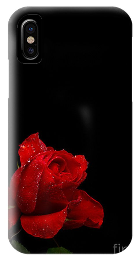 Red IPhone X Case featuring the photograph A Single Red Rose by Fred Ziegler