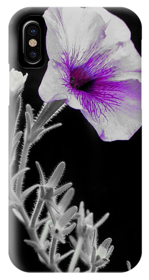 Flower IPhone X Case featuring the photograph A Splash Of Purple by Laura Corebello
