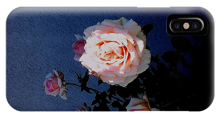 Floral IPhone X Case featuring the photograph A Spot Of Sunlight by Fred Wilson