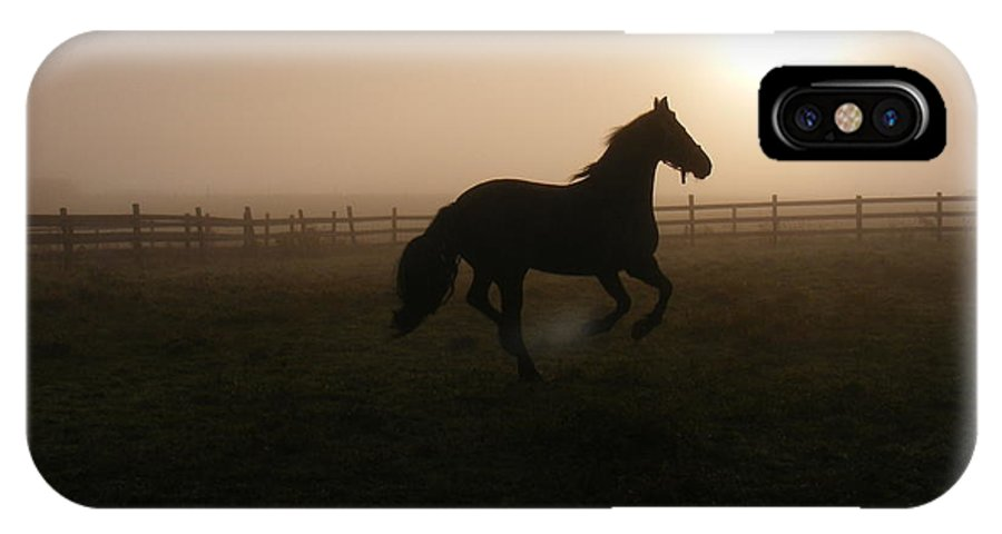 Horse IPhone X Case featuring the photograph A Sunrise Gallop by Laura Gillmer