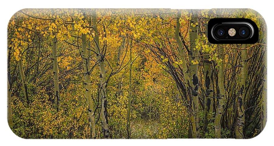 Aspens IPhone X Case featuring the photograph A Teton Autumn by Tom Fretz