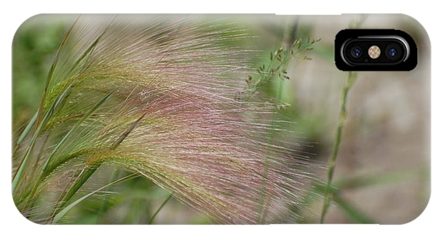 Nature IPhone X Case featuring the photograph A Touch Of Pink by Bianca Nadeau