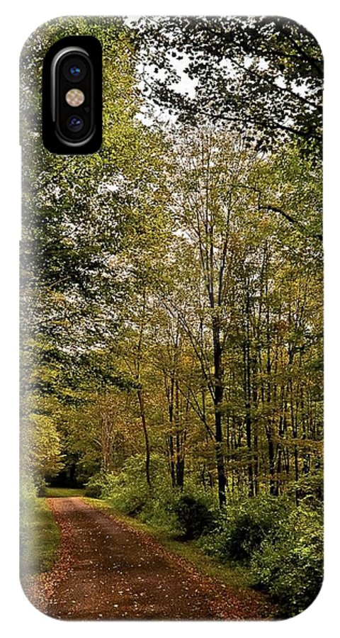 Tree Art Prints IPhone X Case featuring the photograph A Walk In The Woods by Garett Gabriel