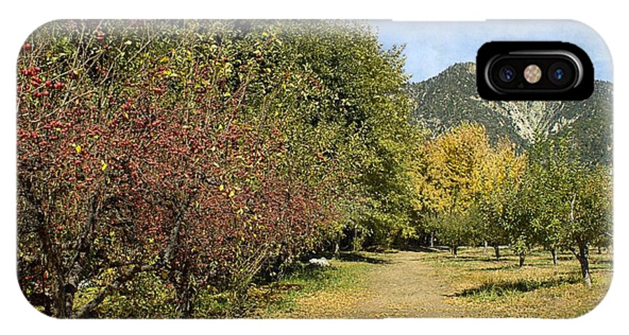 Path IPhone X Case featuring the photograph A Walk Through The Orchard by Peggy Hughes
