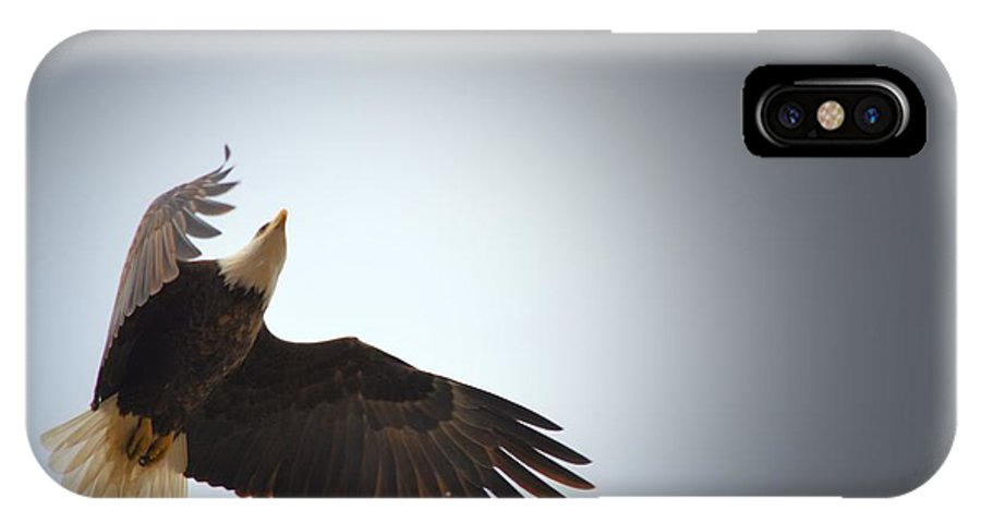 Bald Eagle IPhone X Case featuring the photograph Above All Else 2 by Bonfire Photography