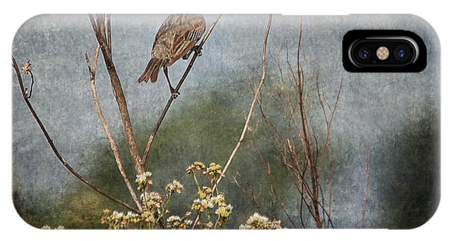 Dickcissel IPhone X / XS Case featuring the photograph Above The Prairie by Dale Kincaid