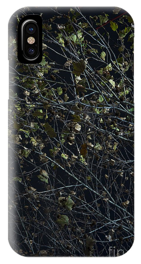 Abstract IPhone X Case featuring the photograph Abstract Background Of Tree At Night by Jacek Malipan