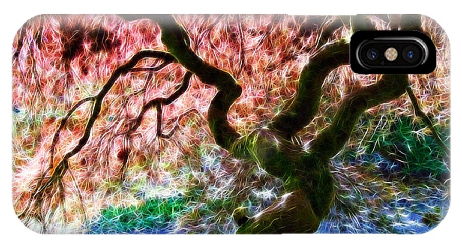 Acer Tree IPhone X / XS Case featuring the photograph Acer Abstract by Susie Peek