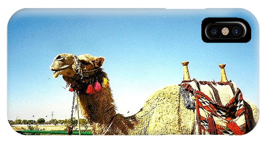 Camel IPhone X Case featuring the photograph Adorned Camel by Terry Matysak
