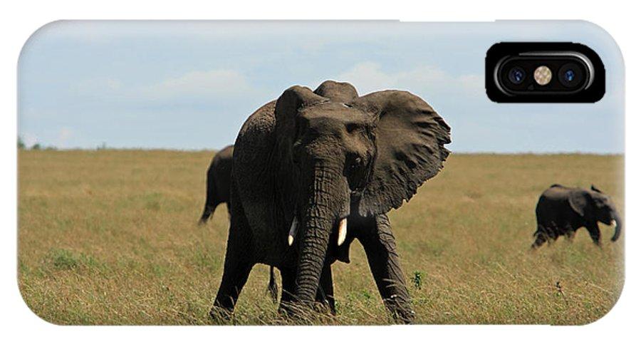 Elephant IPhone X Case featuring the photograph African Elephant Masai Mara Kenya by Aidan Moran
