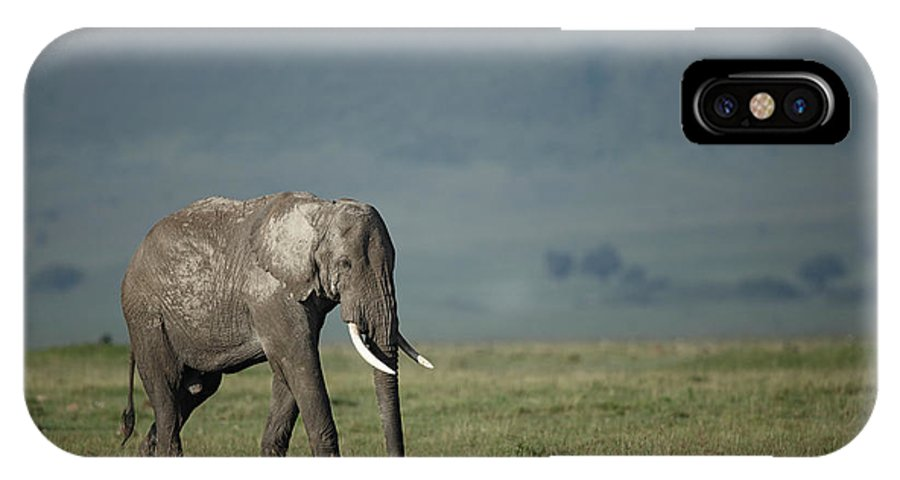 Wildlife IPhone X Case featuring the photograph African Elephant by Paul E Tessier