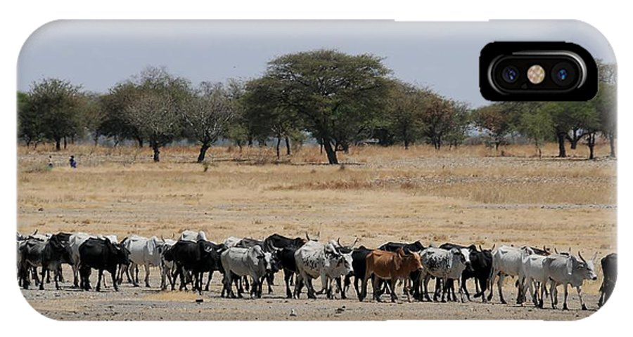 Landscape IPhone X Case featuring the photograph African Series by Katherine Green